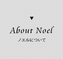 ノエルについて